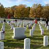 Section 60,  Arlington National Cemetery Veterans Day