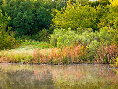 2009 SW Nature Preserve - Arlington, TX USA