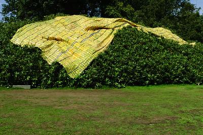 Sonsbeek Art 2008