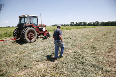 Arnie Ralston walks through an alfalfa field while baling hay at a field off of IL-130 about twelve miles from Charleston, Illinois on Tuesday, June 16, 2008. (Jay Grabiec/Staff Photographer)