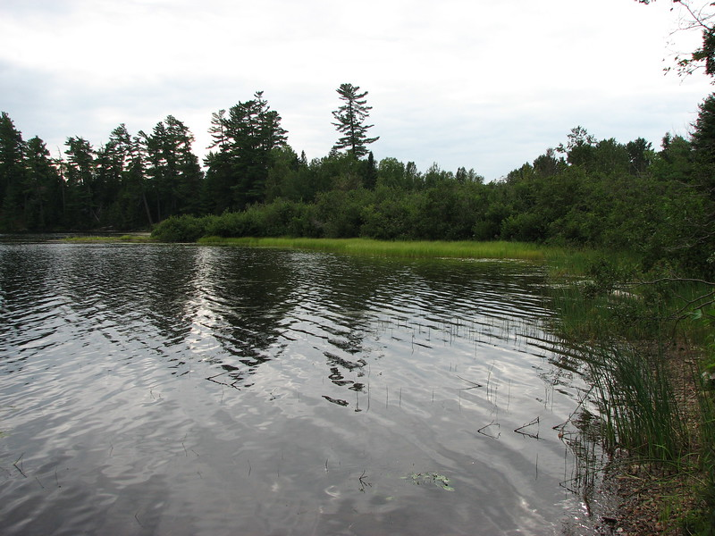 The north corner of Arnold Pond. The Expedition route was through this area to reach the inlet and continue to the Height of Land.