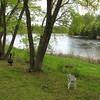 The riverbank at the campground. Arnold's men camped here.