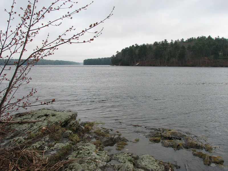 View of the Chops looking down the Kennebec towards the ocean