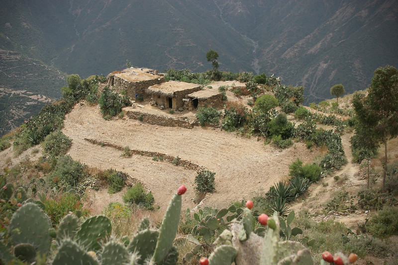Mountain Farm, Eritrea Mountains Near Asmara