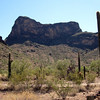 Picacho State Park == halfway between Phoenix and Tucson