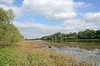 Earlswood Lakes LR_017