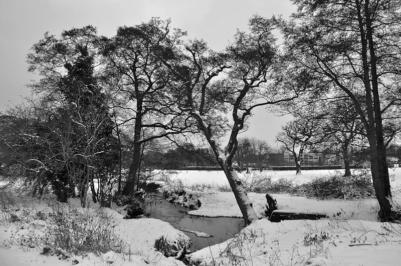 bw snow sat jan ap_lr_016