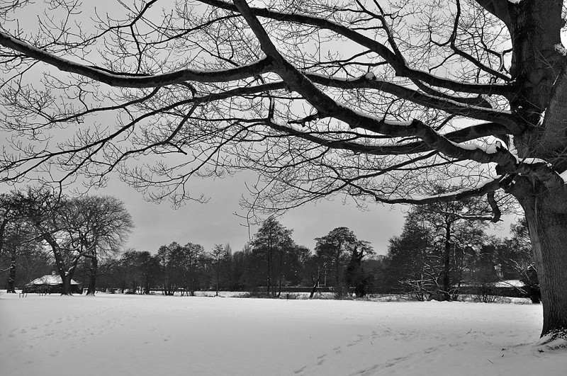 bw snow sat jan an_lr_014