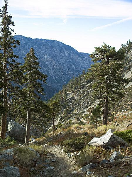 Baldy Bowl Trail to San Antonio Ski Hut<br /> October 10, 2006