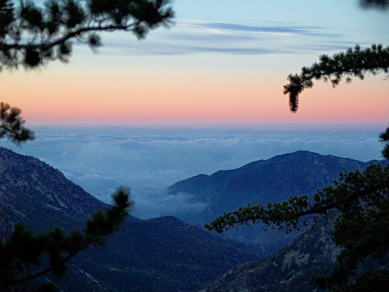 Pre-dawn light from the Baldy Bowl Trail<br /> October 10, 2006<br /> Pine trees framing clouds over Clairemont