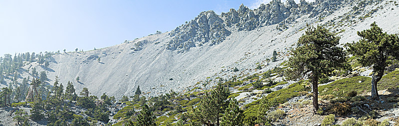 "View down the Baldy Bowl Trail towards Bighorn Peak, Cucamonga Peak and Onario Peak with San Gorgonio and San Jacinto in the distance. October 10, 2006  <a href=""http://www.dbdimages.com/photos/101926204_2Dxka-O.jpg""TARGET=""blank"">View large in another window.</a> Use your viewer's zoom function if necessary and be sure to use the sliders."