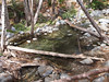 San Antonio Creek, above Mount Baldy community.<br /> October 14, 2011