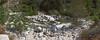 Santa Anna River below Bear Creek confluence.<br /> October 13, 2011