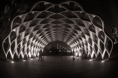 Night at the Pavilion