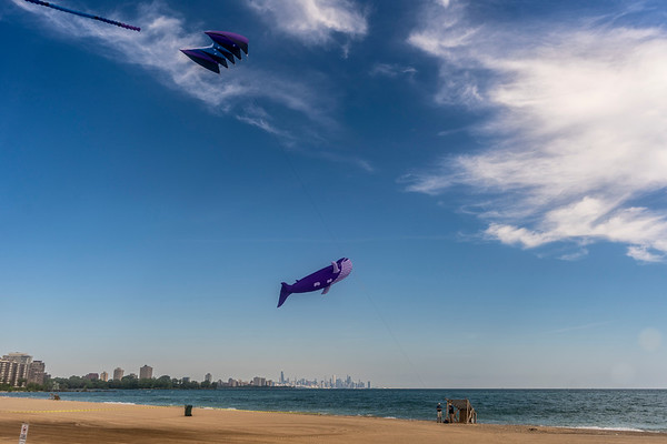 Nice Day to Fly Kites
