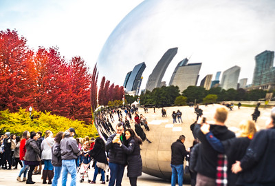 Fall at the Bean