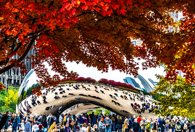 Autumn at the Bean No. 45