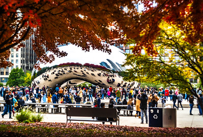 Autumn at the Bean No. 43