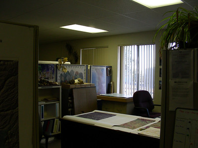 Sues office