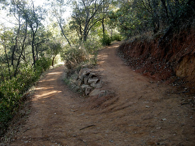 they did a really good job building this trail