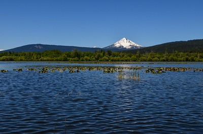 Mt McLoughlin from Pelican Bay