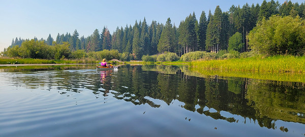 smoky skies and drought stressed firs along Recreation Creek