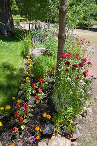 the front flower bed
