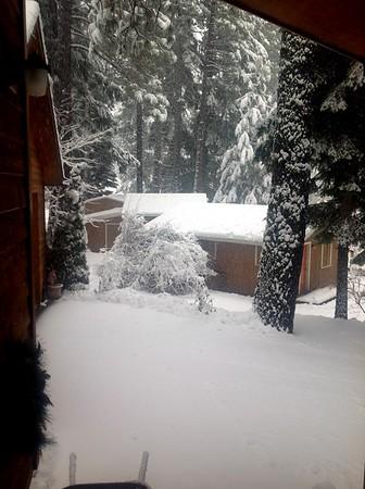 December Snow 2015