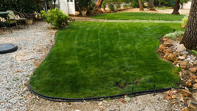 Both lawns after a fresh morning mowing