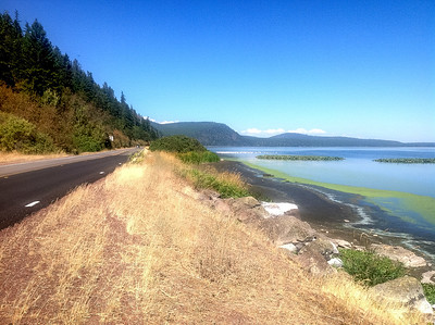 09-15-2012 Klamath Lake Howard Bay Pelicans