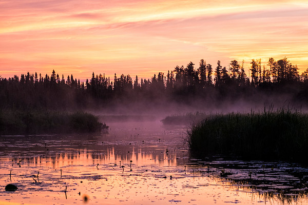 Misty Sunrise Over Sand River