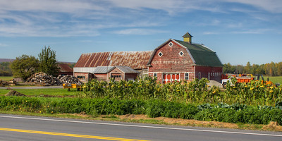 Plattsburgh Barns Tom Miller Road