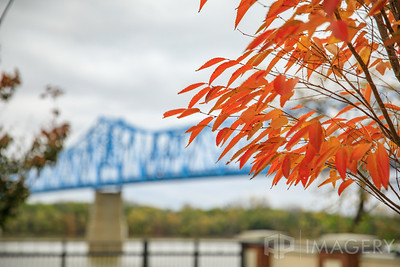Smothers Park - Leaves and Bridge