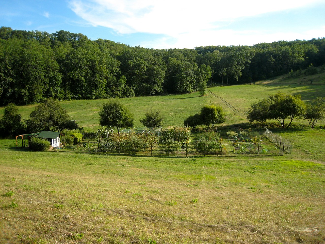 A view of the vegetable plot from near the forge down past the stable.  The track leading across the far field to the forest is where our firewood store is.  We have a big shed near the house that we fill with firewood each year.  Its our main source of heating.
