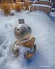 DMBraitsch - I Love Snow?