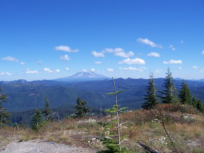 Mt. Adams.  We had a great view of all three volcanoes