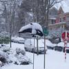 An Orca antena ball...in snow