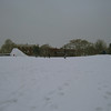 Cal Anderson Park...in snow