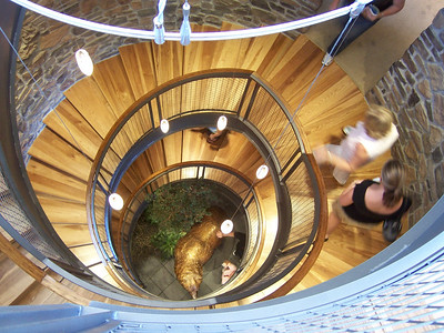 Best Stairwell.  This awesome four story spiral staircase accessed all the floor with a tower lookout level at the top.