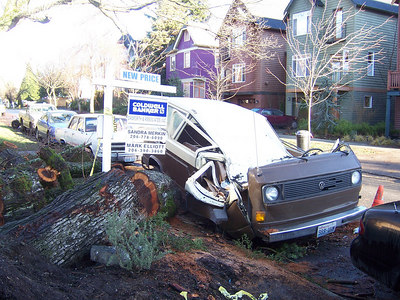 """Nasty left over from the windstorm two weeks ago.  Notice the house has a """"New Price""""."""