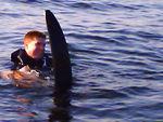 Waterskiing on Lake Washington