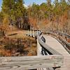 Apalachicola, North Florida.