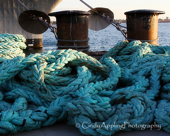 Cast Off Mooring Lines - San Diego, California