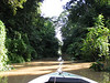 Boating through a small tributary of the big K'river.