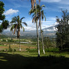 View of the valley from behind the hacienda