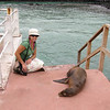 This seal lifted its head and flapped a flipper when Julie sat down next to it, but quickly resumed its nap.