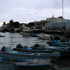 Small fishing boats and expensive restaurants line the harbour in Puerto Ayora