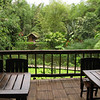 Mindo Lago dining area overlooking the frog pond and lake