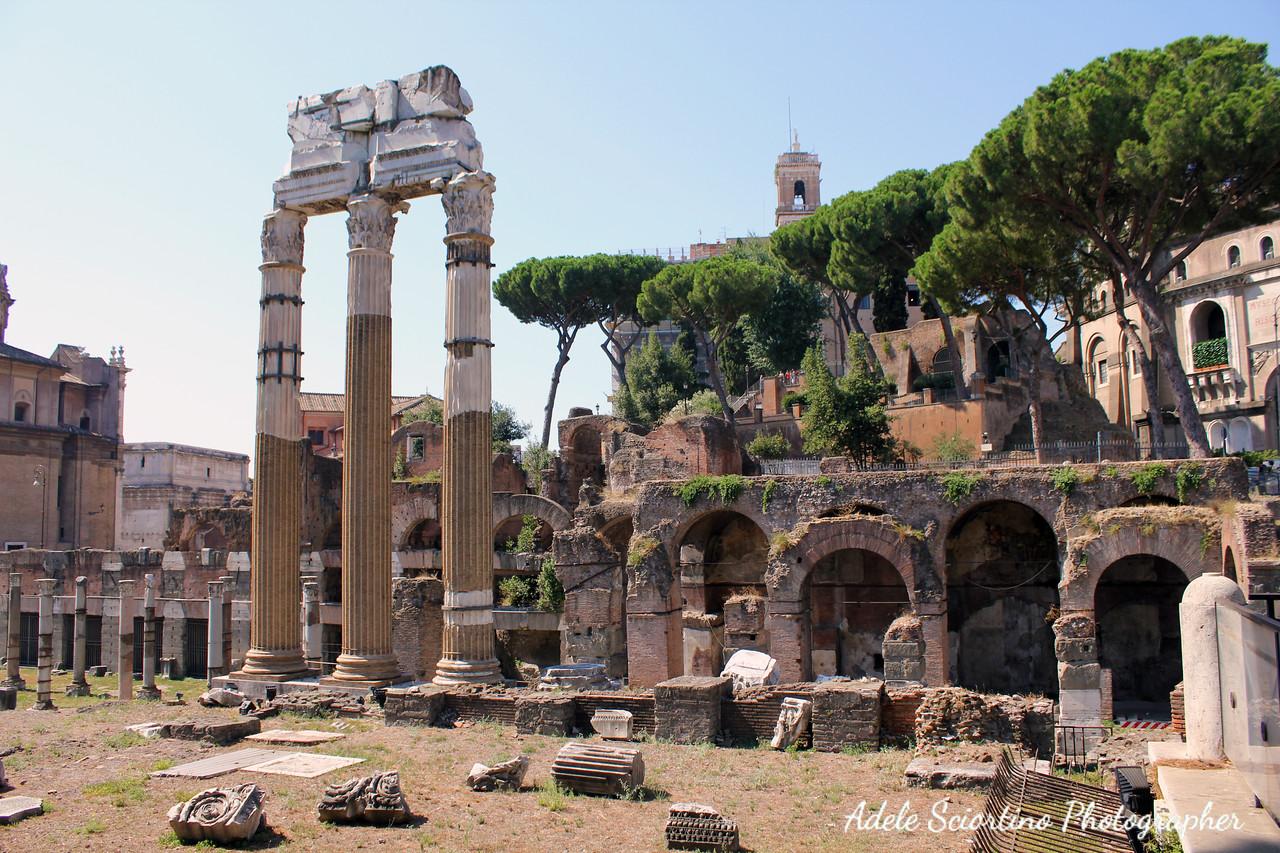 Forum of Caesar Ruin 46BC
