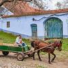 Transylvania 2019-1130 small